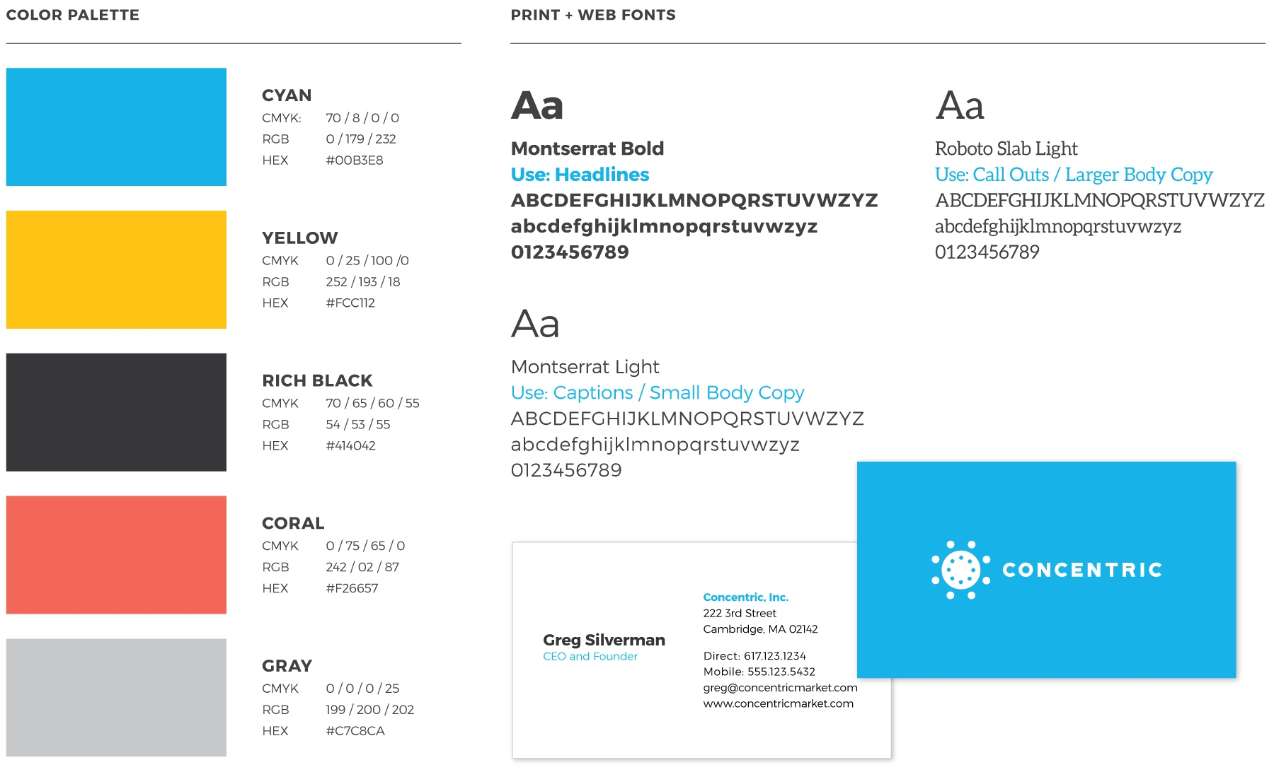 Concentric Style Guide